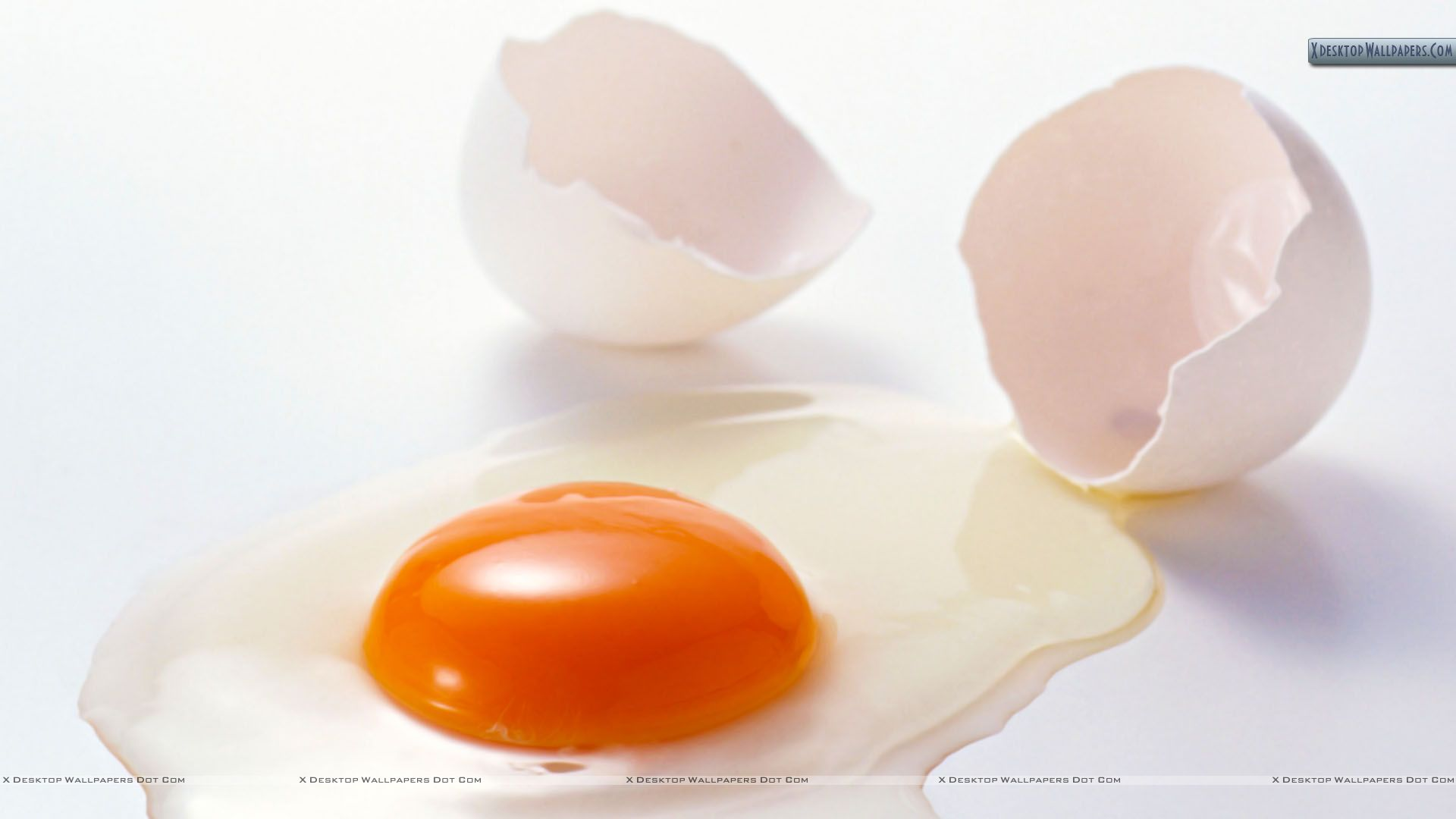 broken eggs Us & world news --headline news --sports --science/tech -- entertainment subscribe contact us breaking news alerts email alerts email  address.