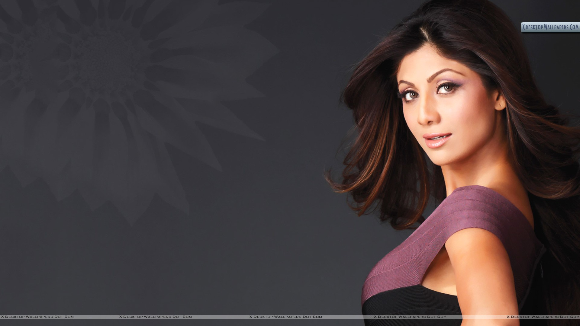 8k Wallpapers Of Shilpa Shetty