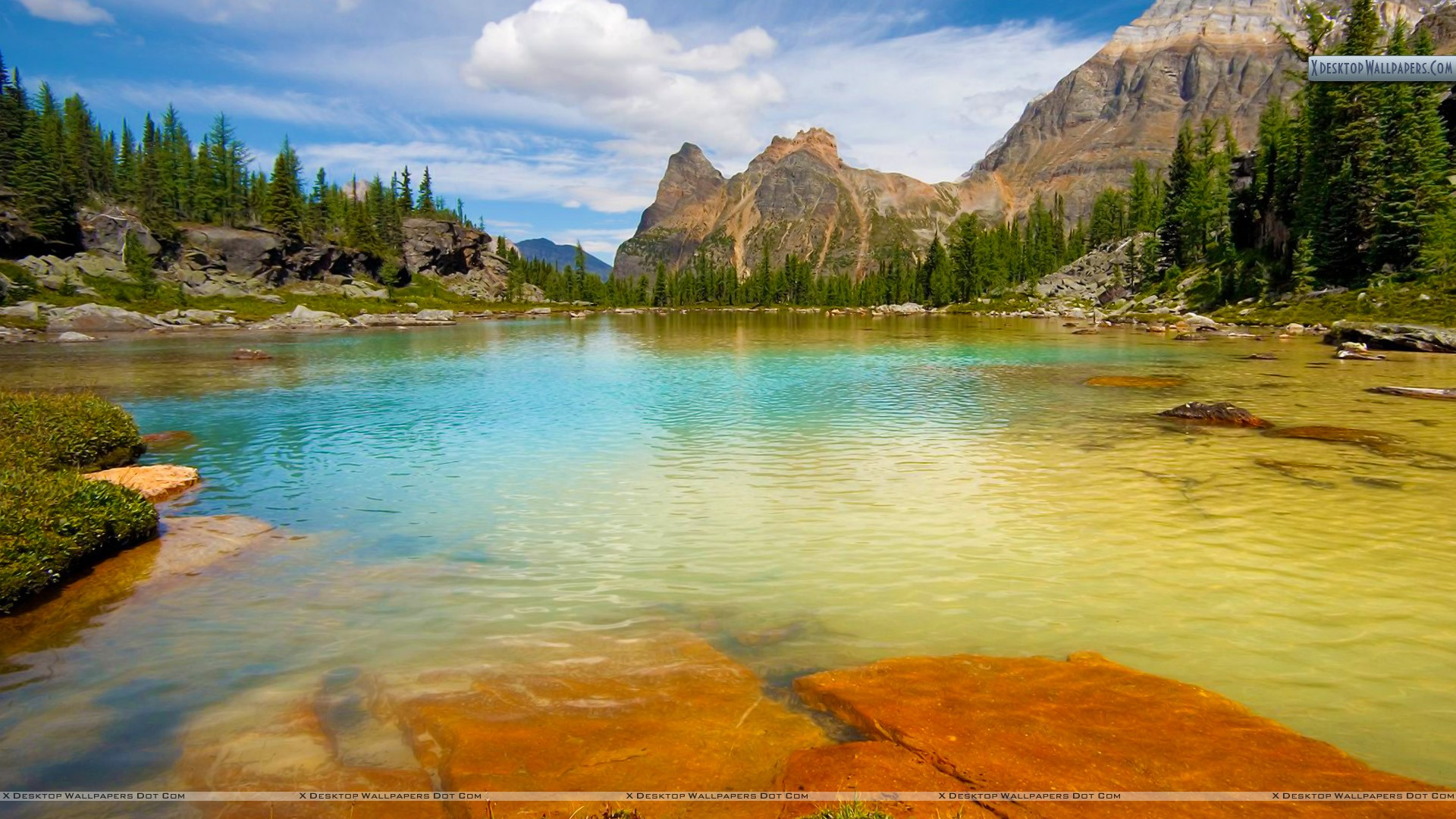 Opabin terrace pools yoho national park british columbia for Terrace british columbia