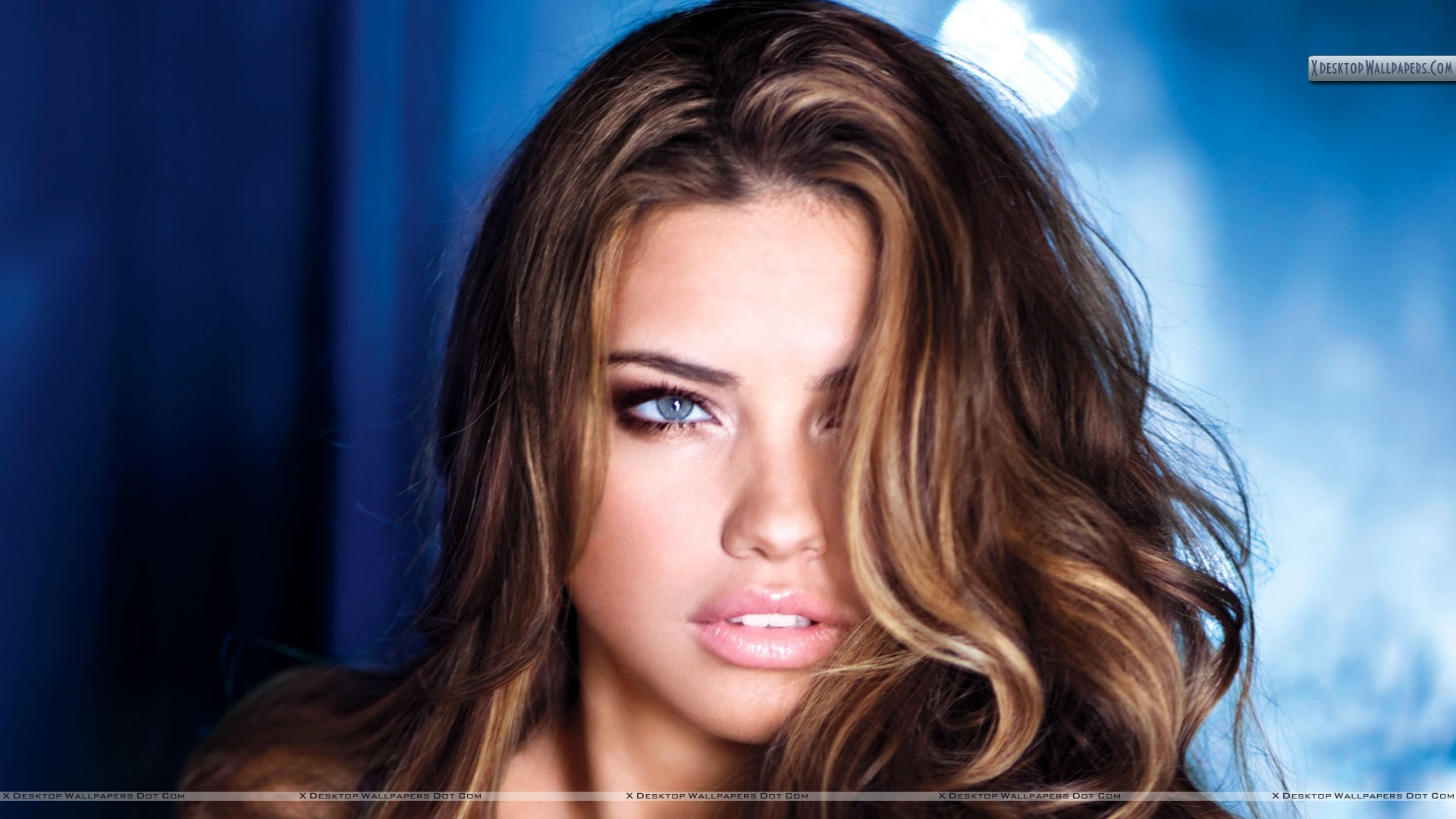 Adriana lima blue eyes golden hair face closeup wallpaper you are viewing wallpaper titled adriana lima voltagebd Images