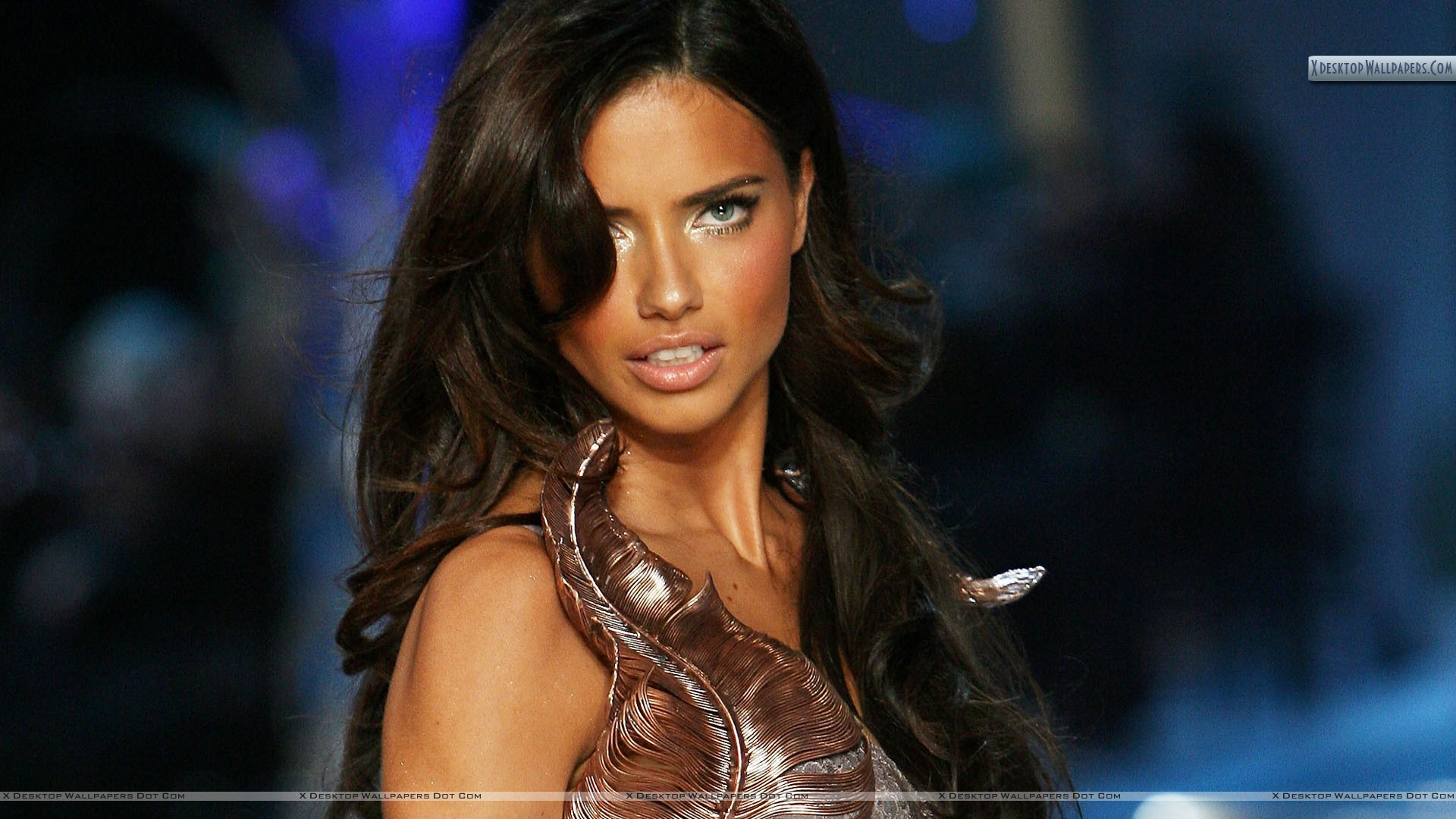 Adriana lima blue eyes side face pose wallpaper you are viewing wallpaper titled adriana lima voltagebd Images