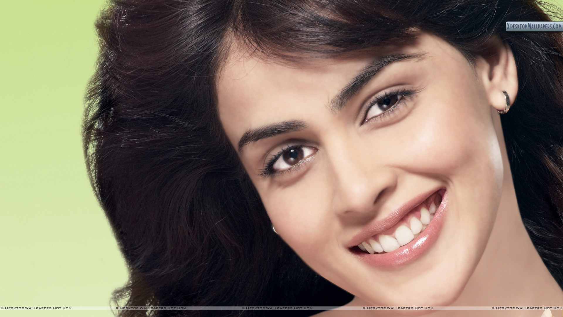 Genelia D Souza Wallpapers 30 Hd Pics: Genelia Dsouza New Wallpapers Photos Hd Wallpapers