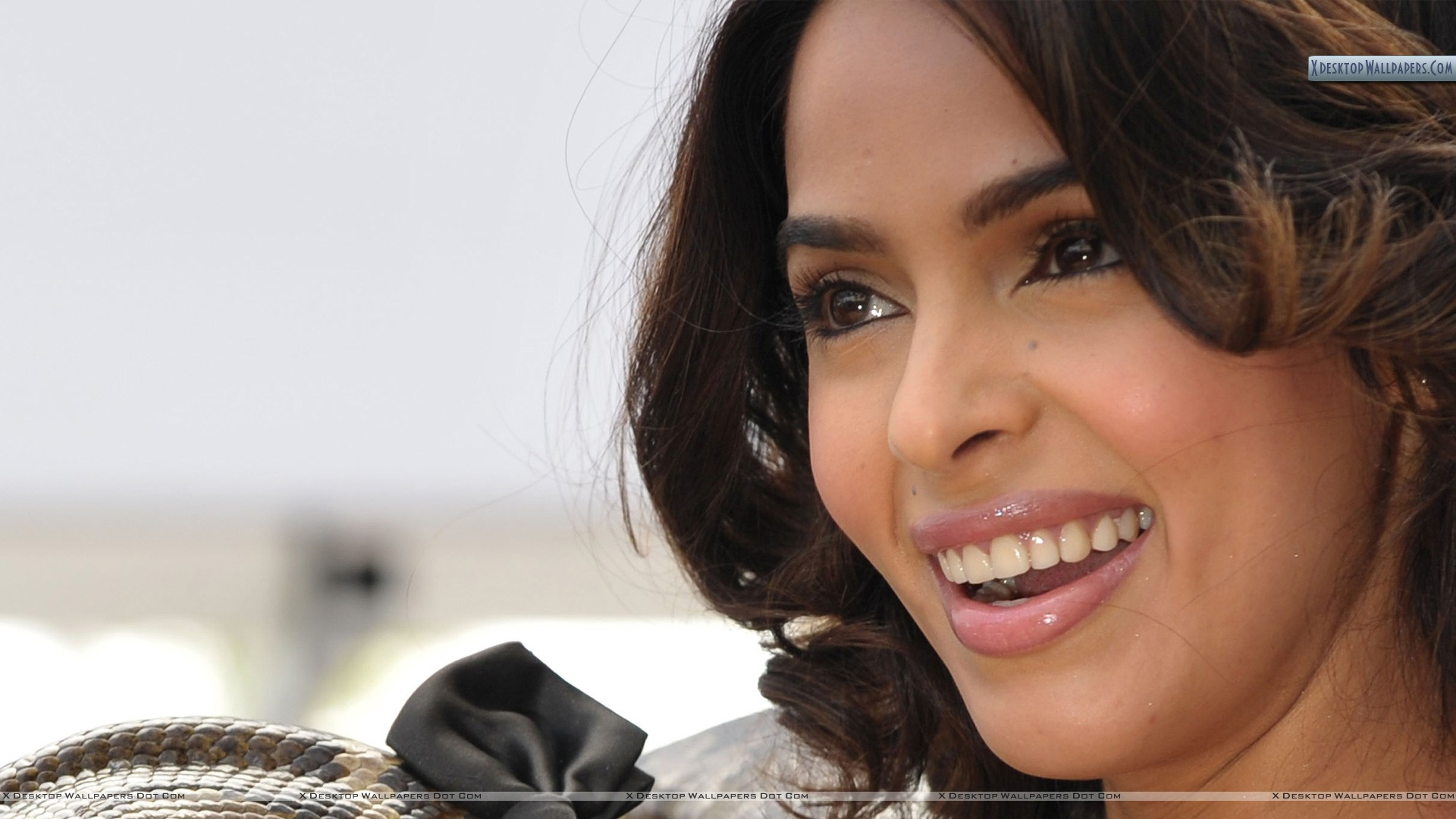 mallika sherawat smiling face closeup wallpaper