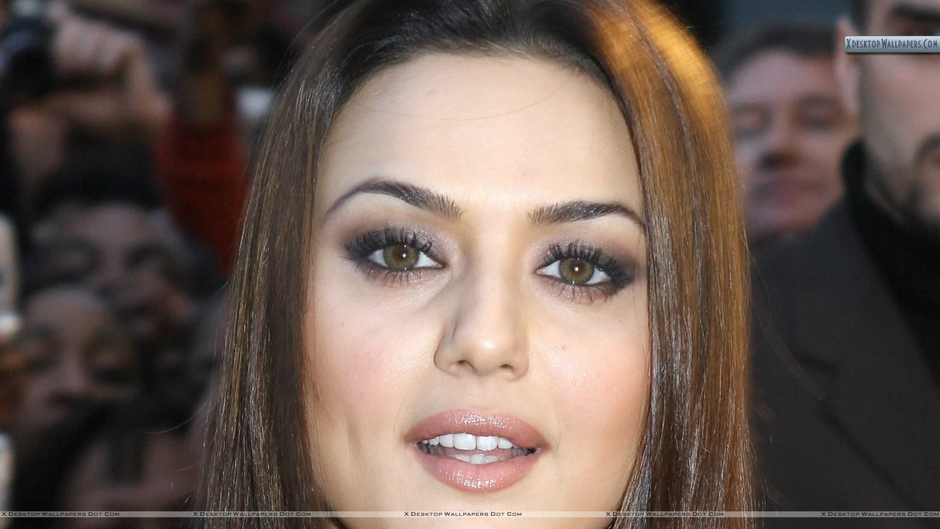 preity zinta brown eyes face closeup wallpaper