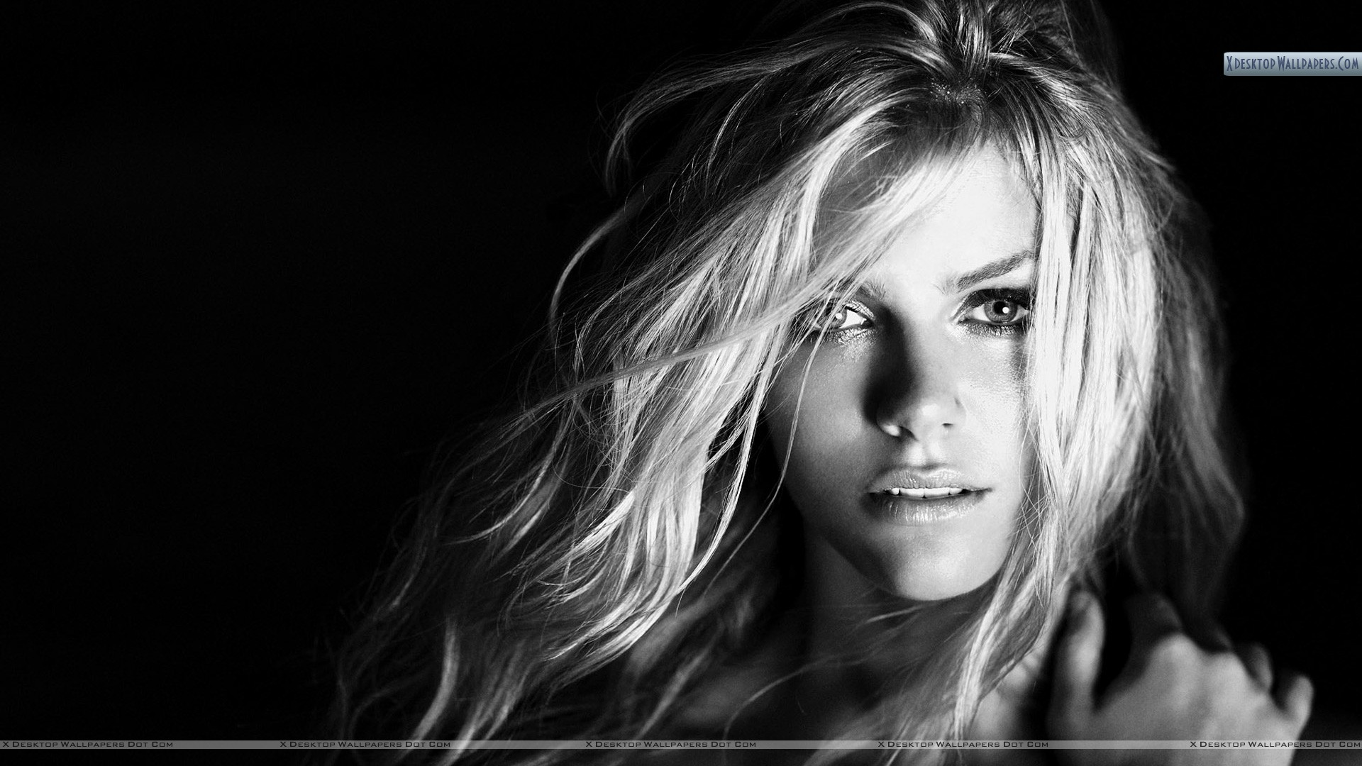 You are viewing wallpaper titled brooklyn decker black white