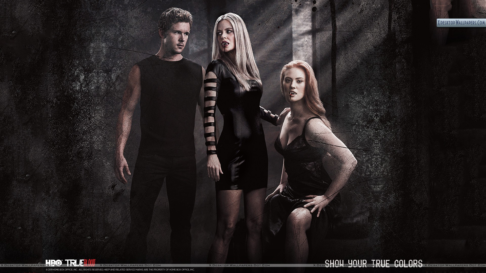You Are Viewing Wallpaper Titled True Blood