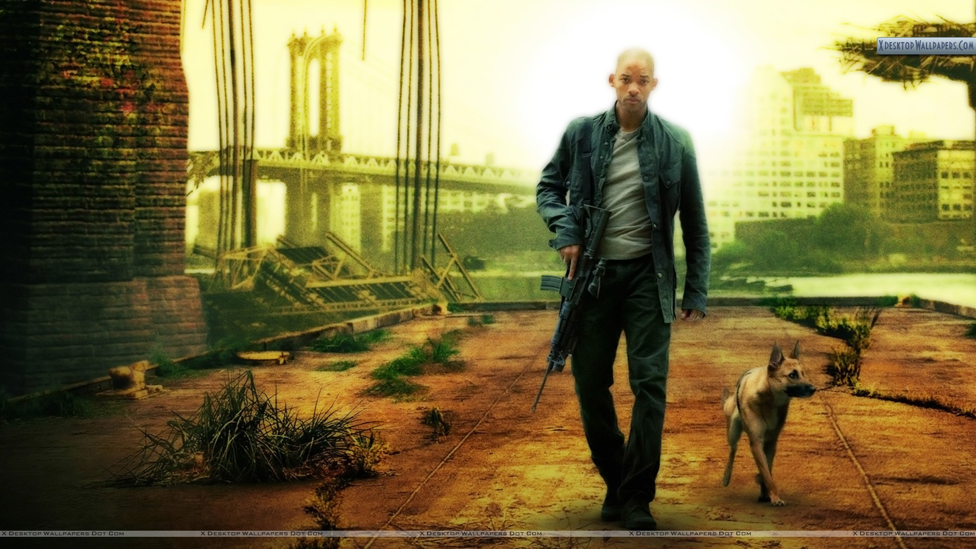 the legend i am The best study guide to i am legend on the planet, from the creators of  sparknotes get the summaries, analysis, and quotes you need.