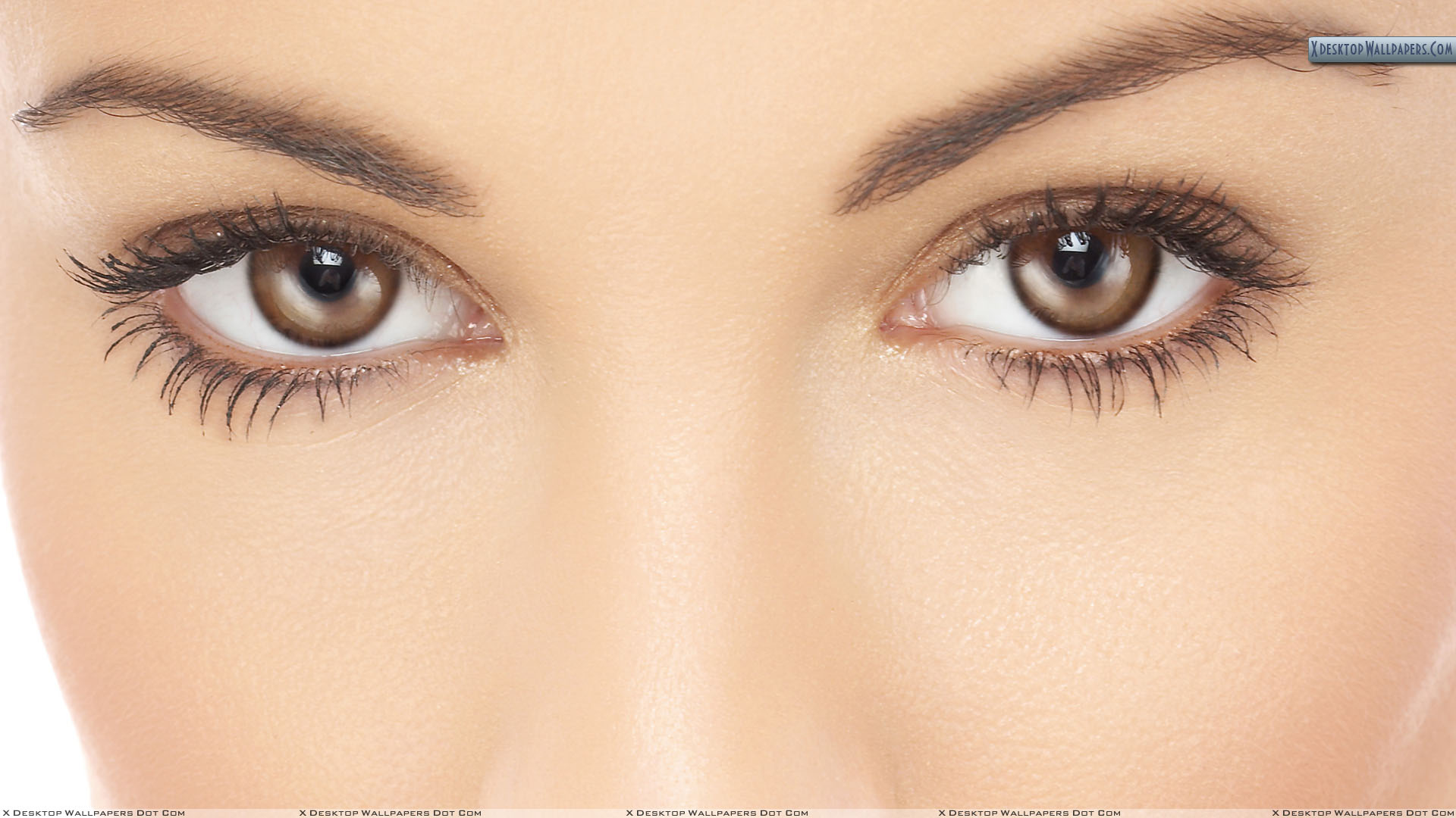 girl cute brown eyes closeup wallpaper