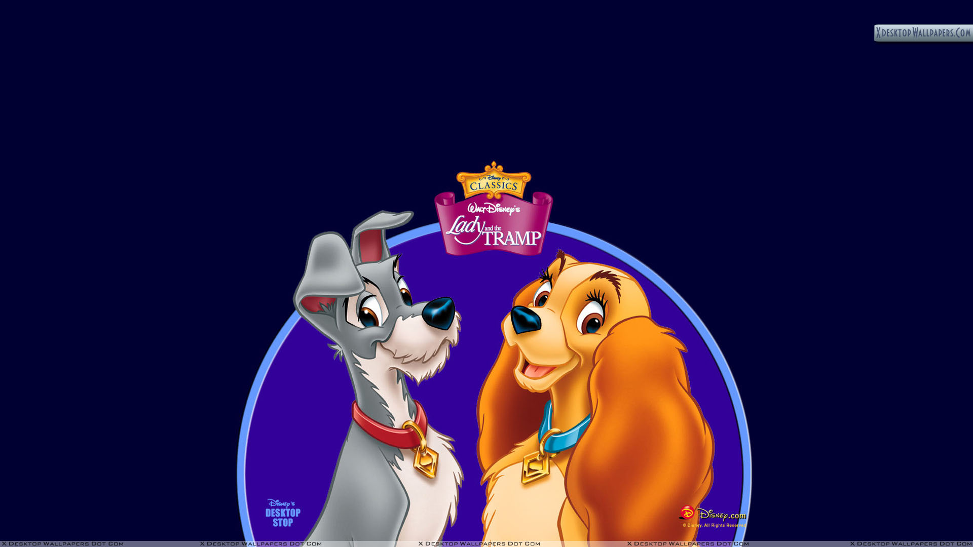 lady and the tramp wallpapers photos amp images in hd