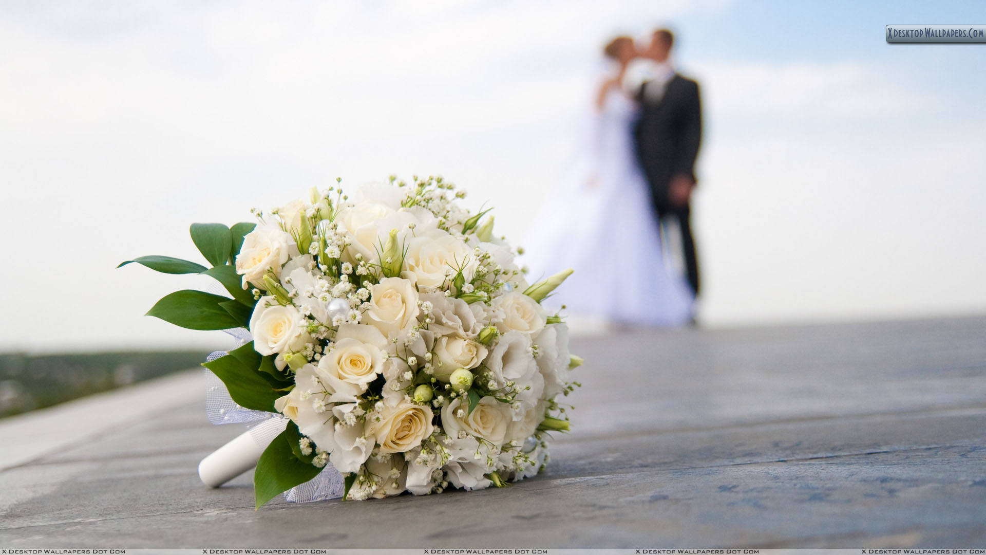 Wedding Wallpapers Photos Images In Hd