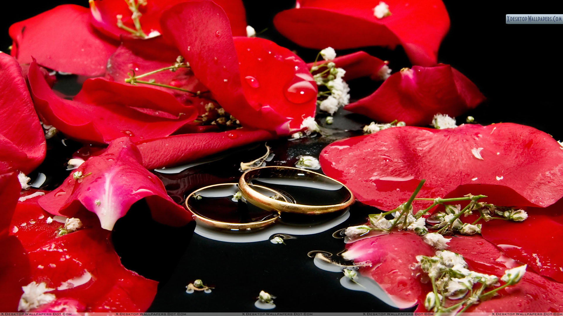 You Are Viewing Wallpaper Titled Wedding Rings With Red