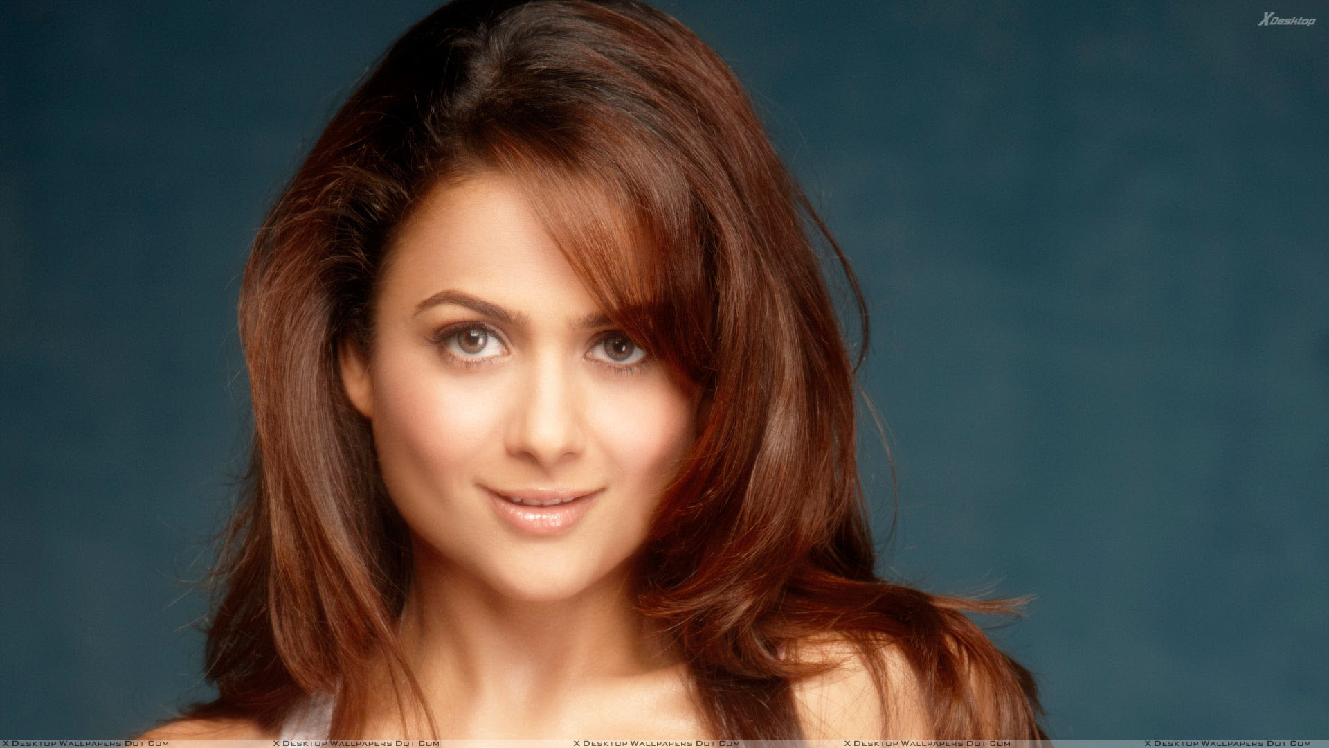 amrita arora wallpapers, photos & images in hd