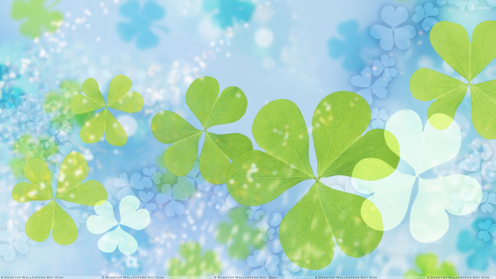 pics photos green leaves on cool blue wallpaper