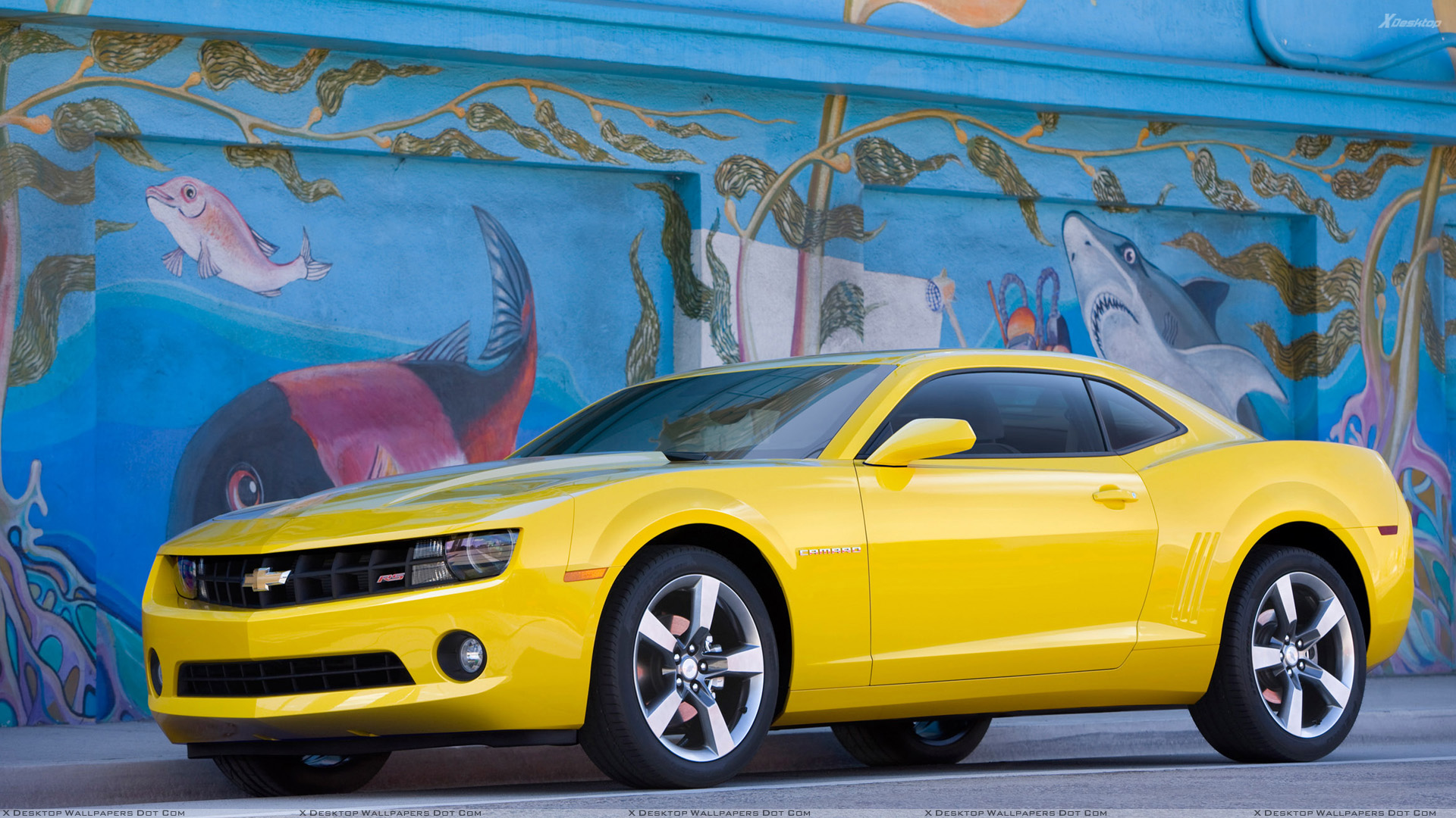 Yellow Cars Wallpapers Photos Images In Hd
