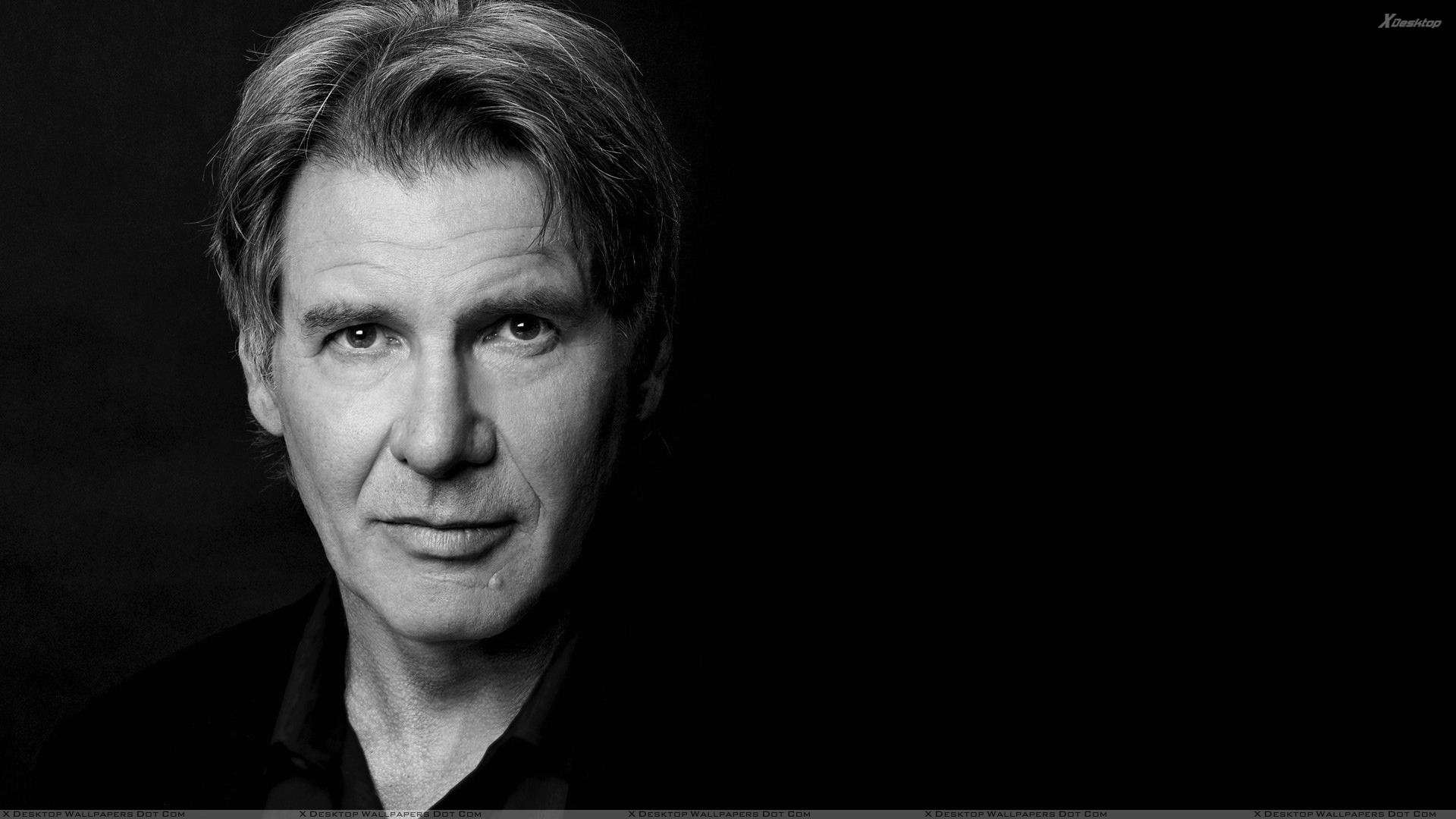 You are viewing wallpaper titled harrison ford looking front black n white face