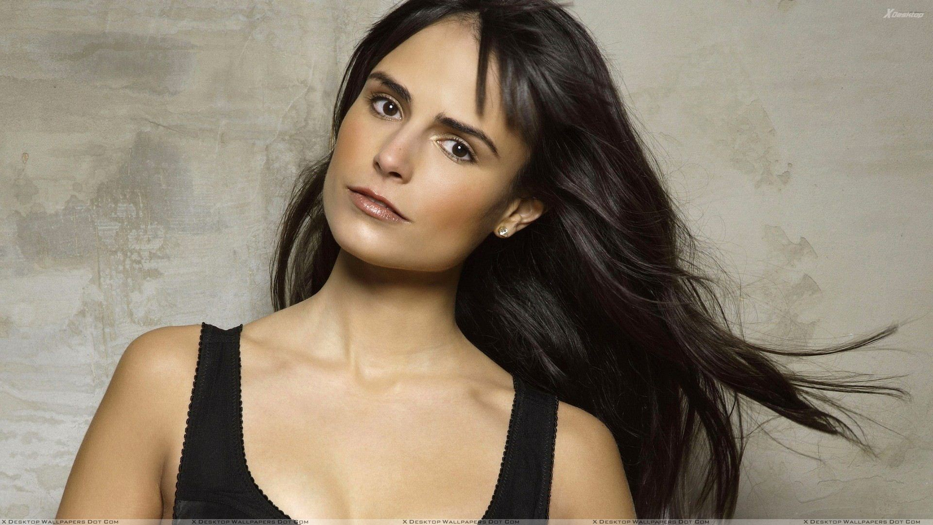 jordana brewster wallpapers, photos & images in hd
