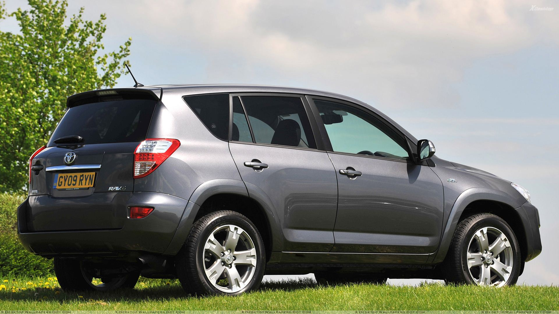 2009 toyota rav4 side back pose in grey wallpaper. Black Bedroom Furniture Sets. Home Design Ideas