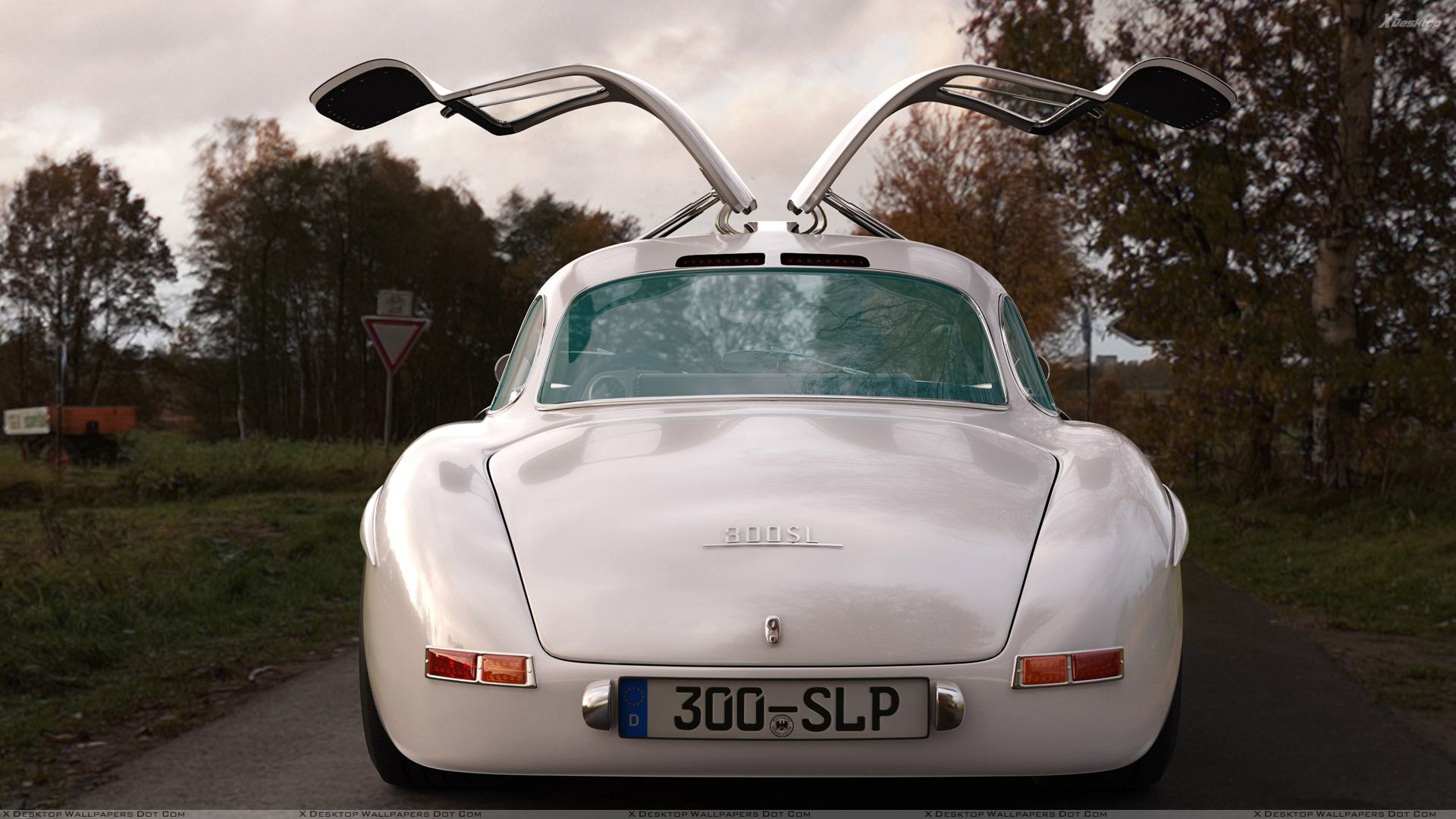 Back%20Pose%20Of%202009%20Mercedes-Benz%20300SL%20Gullwing%20Panamericana%20Replica.jpg