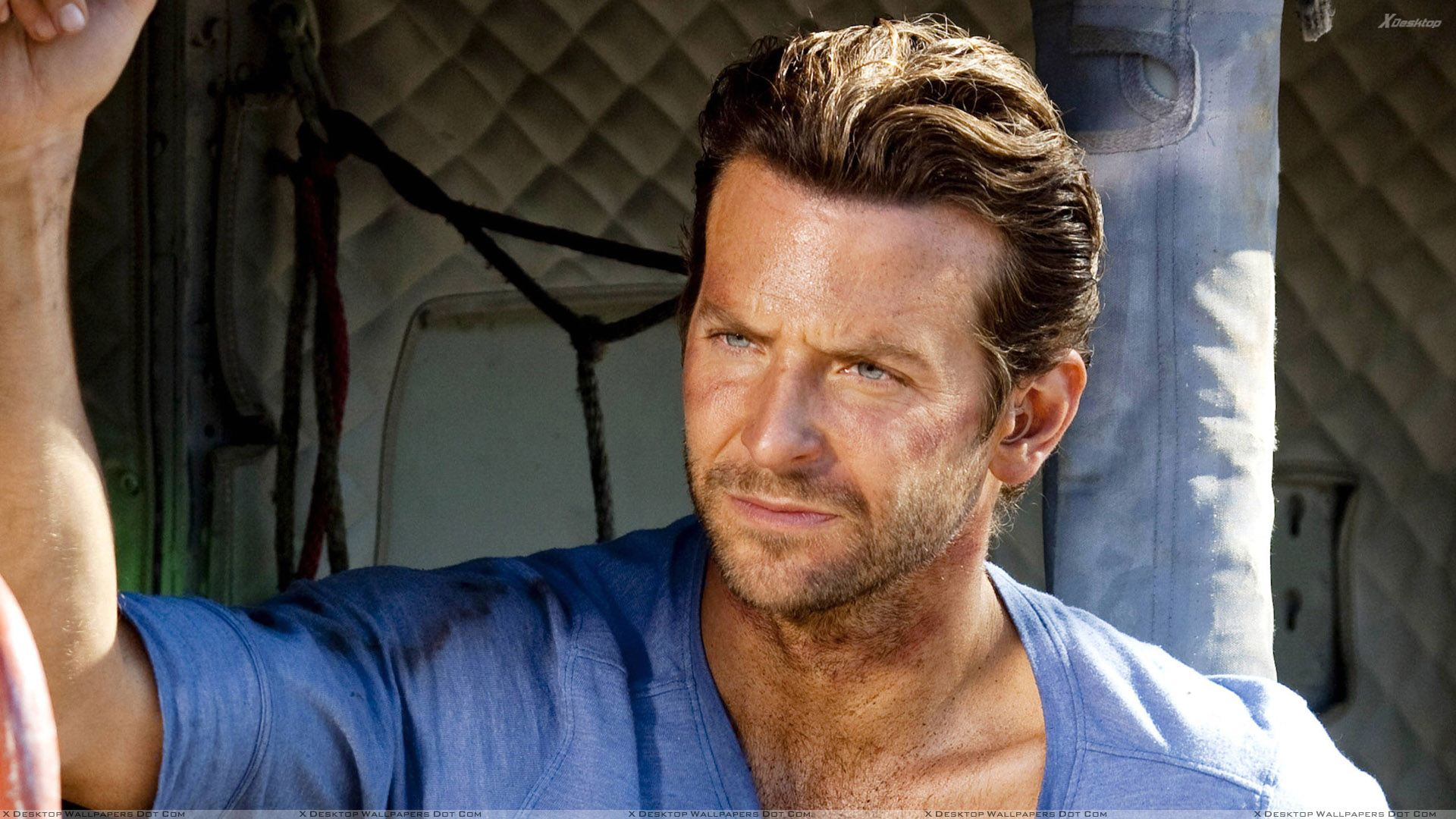 Bradley Cooper Angry Face In Blue T Shirt Photoshoot Wallpaper