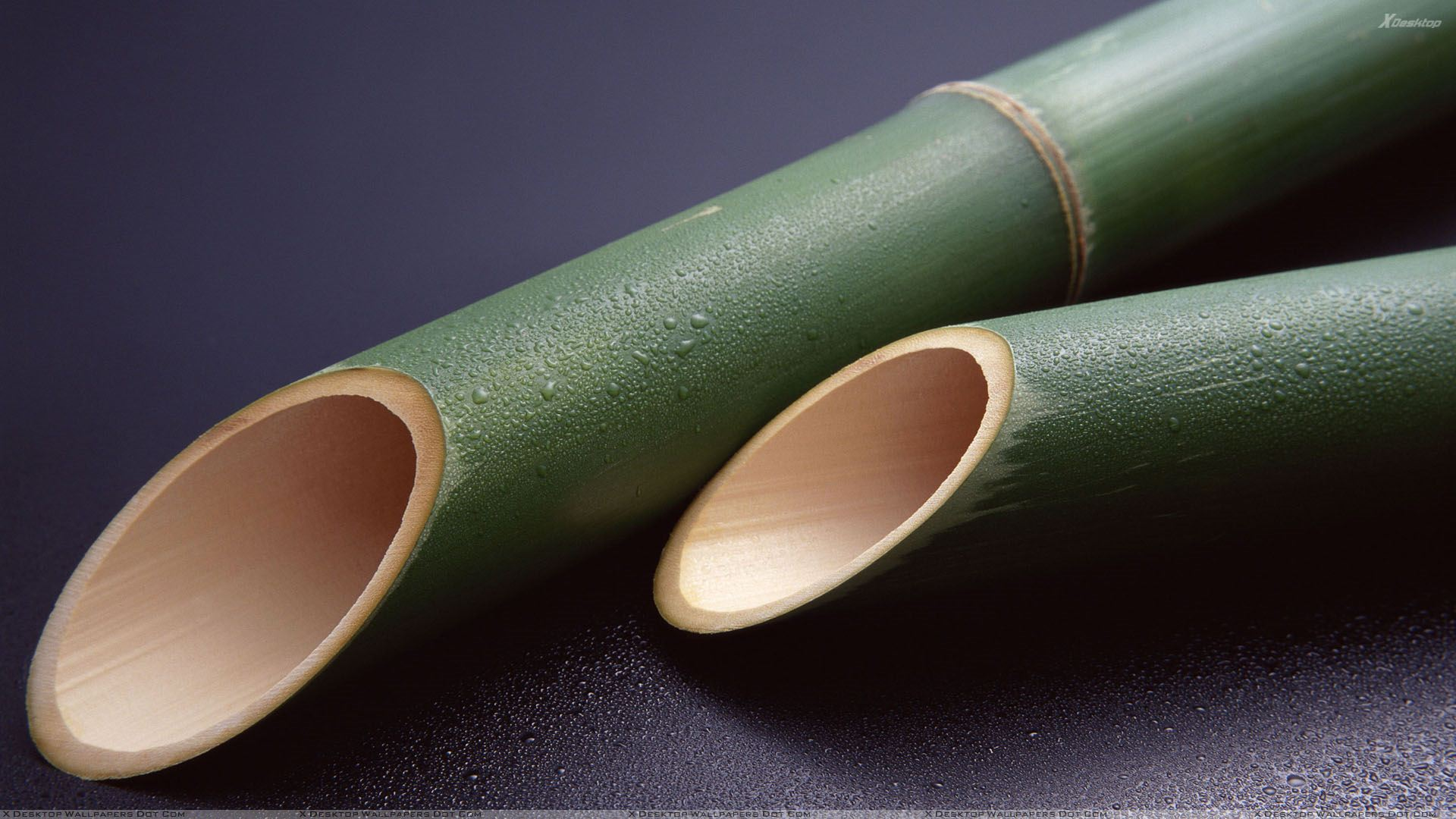 Green bamboo sticks wallpaper