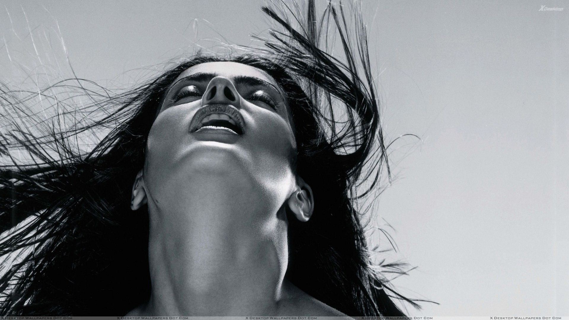 You are viewing wallpaper titled salma hayek black n white
