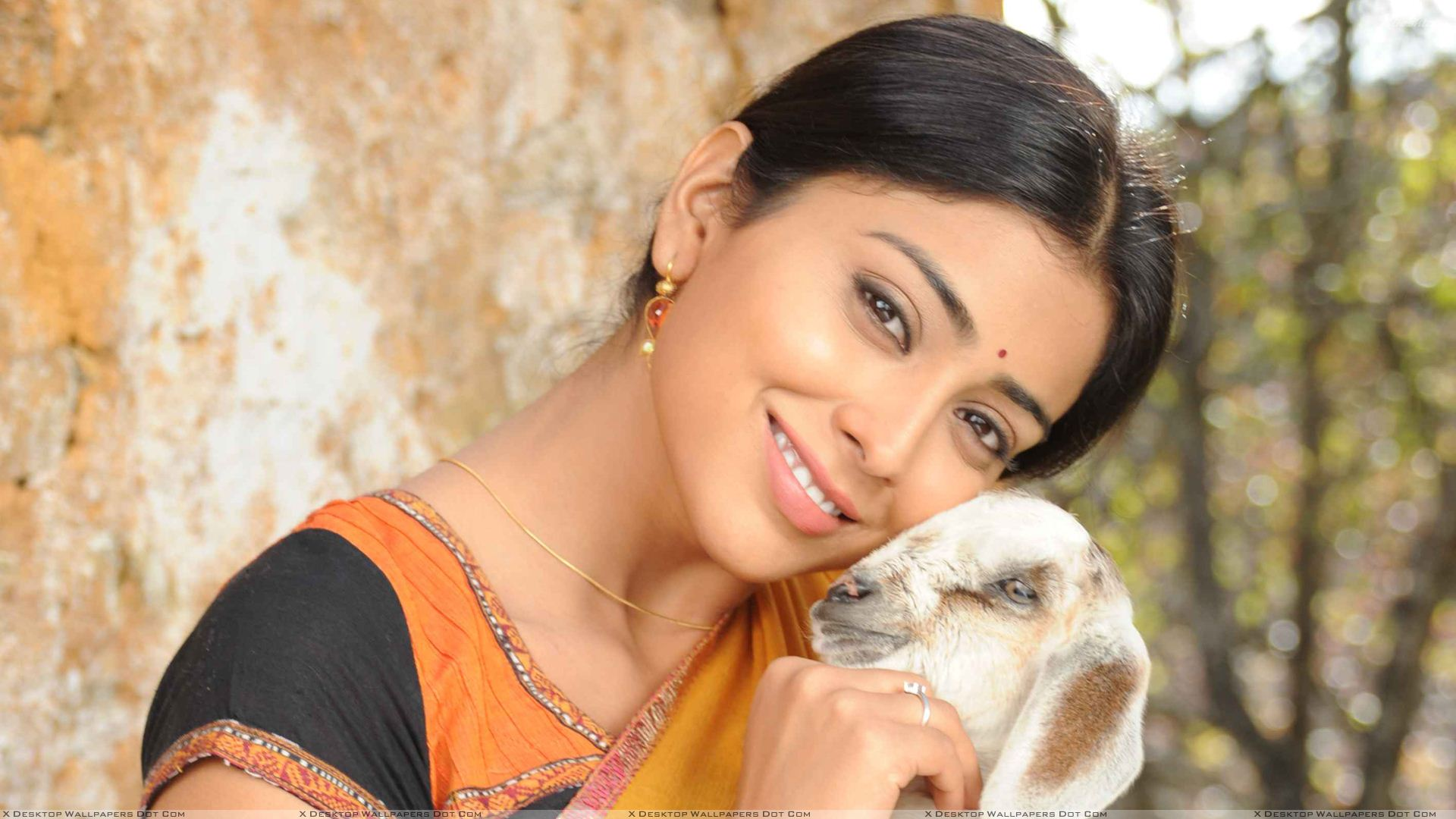 shriya saran smiling with goat photoshoot in kutty movie wallpaper
