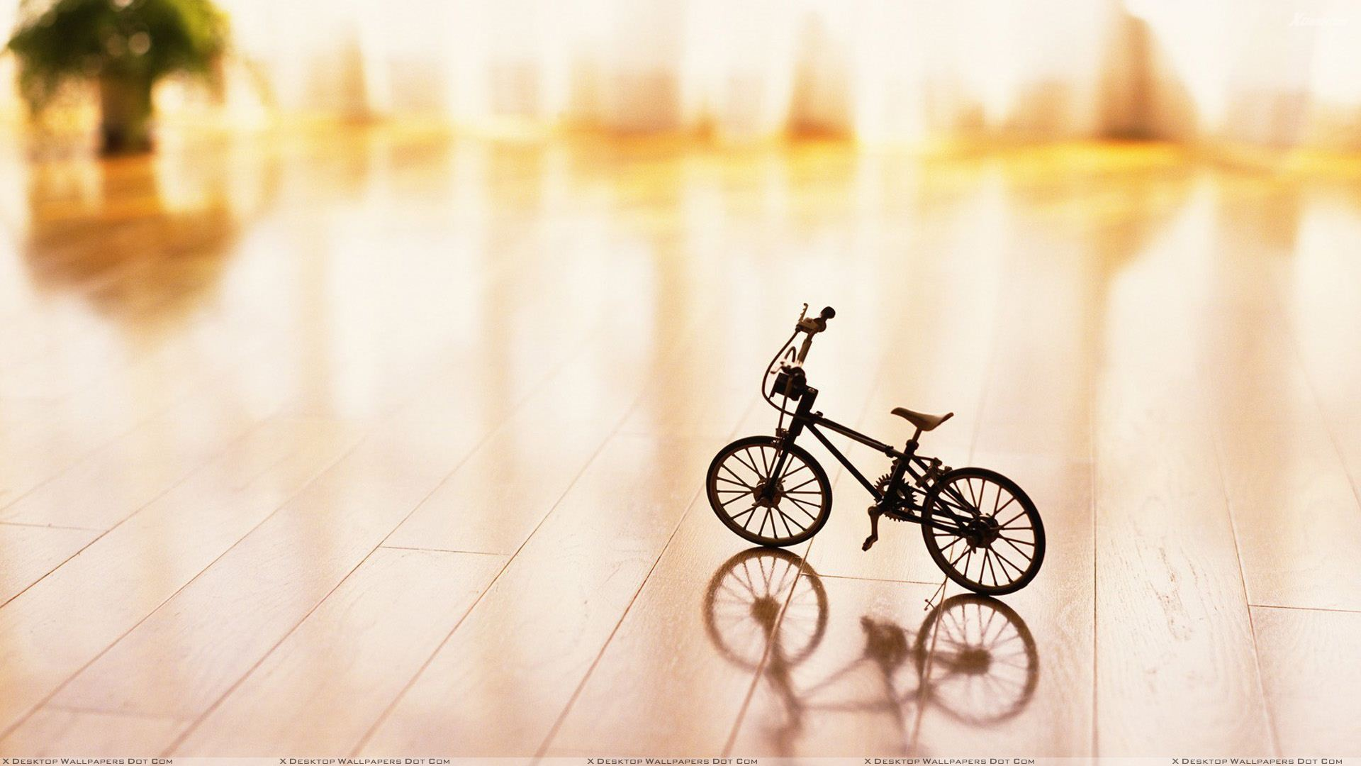 Small cycle on table wallpaper for Table wallpaper