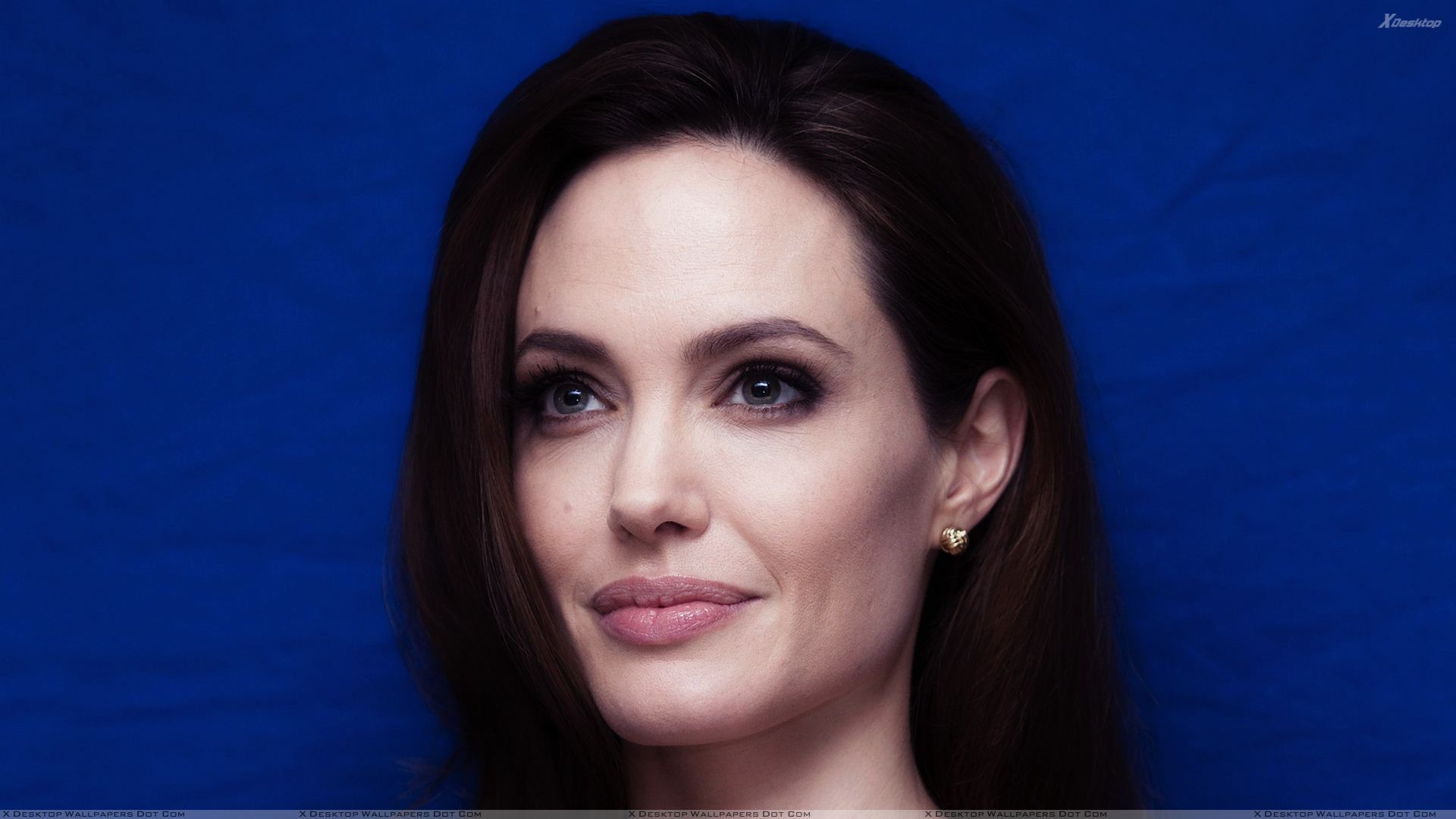 angelina jolie wallpapers photos images in hd