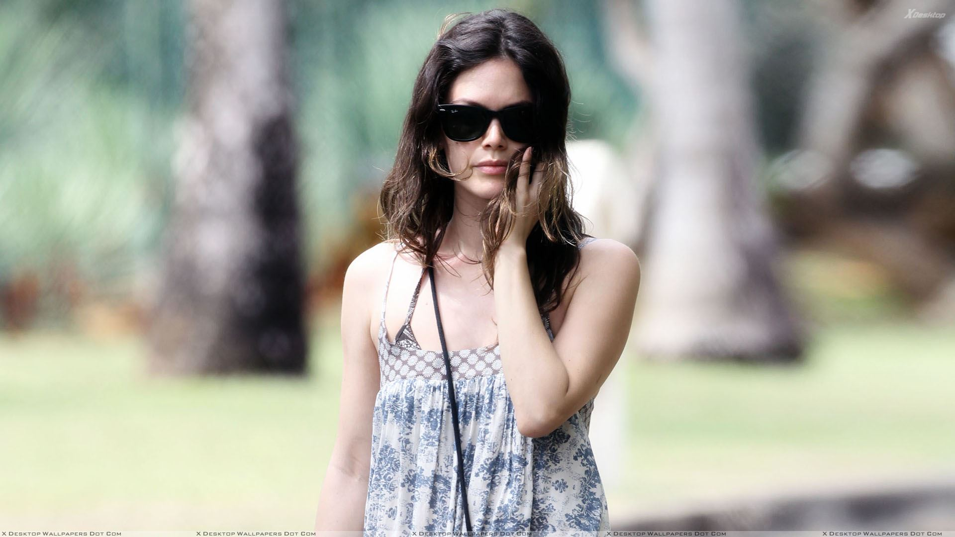 rachel bilson latest wallpapers 2013 - photo #10