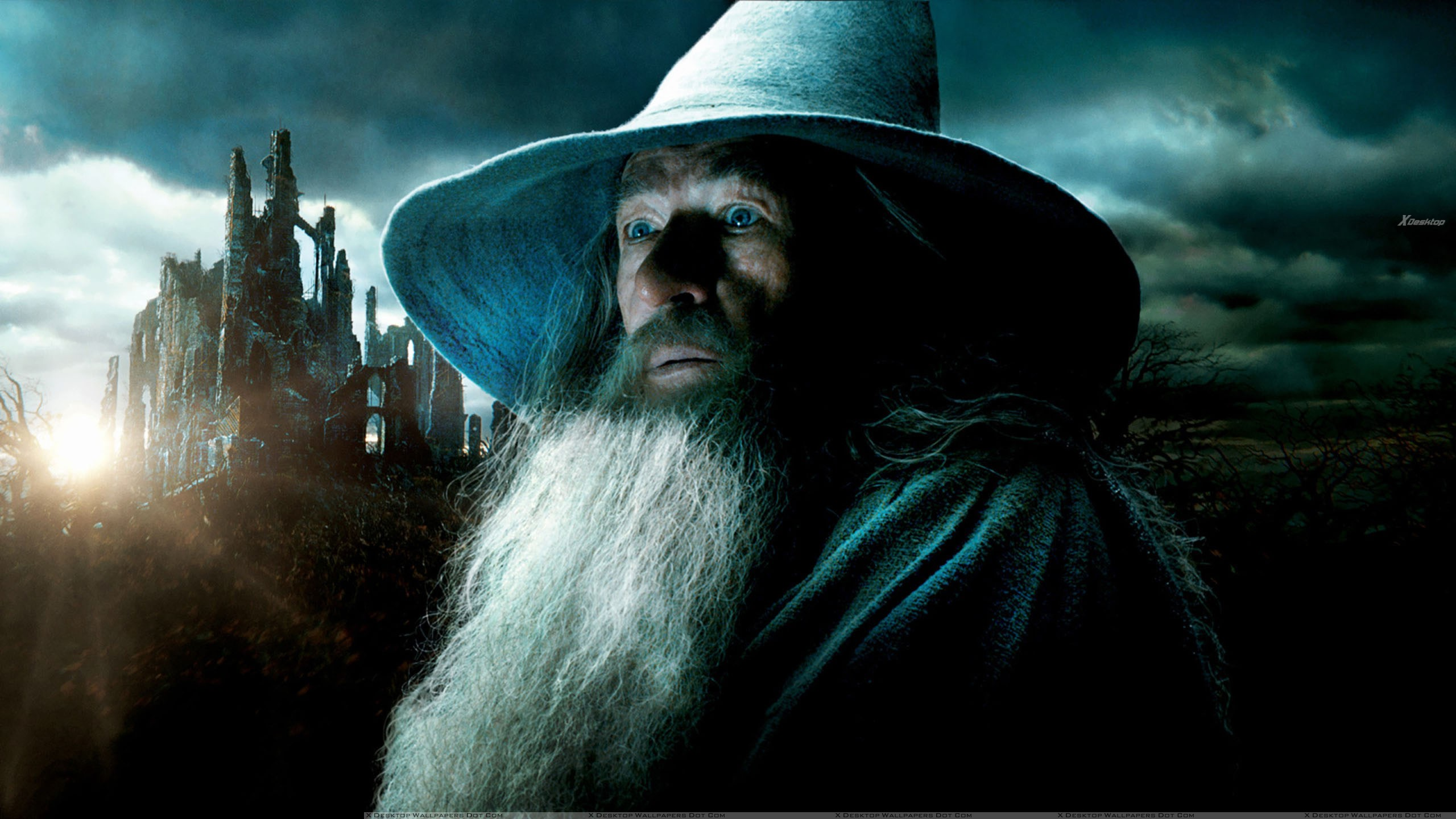 ian mckellen with long beard in the hobbit – the desolation of smaug