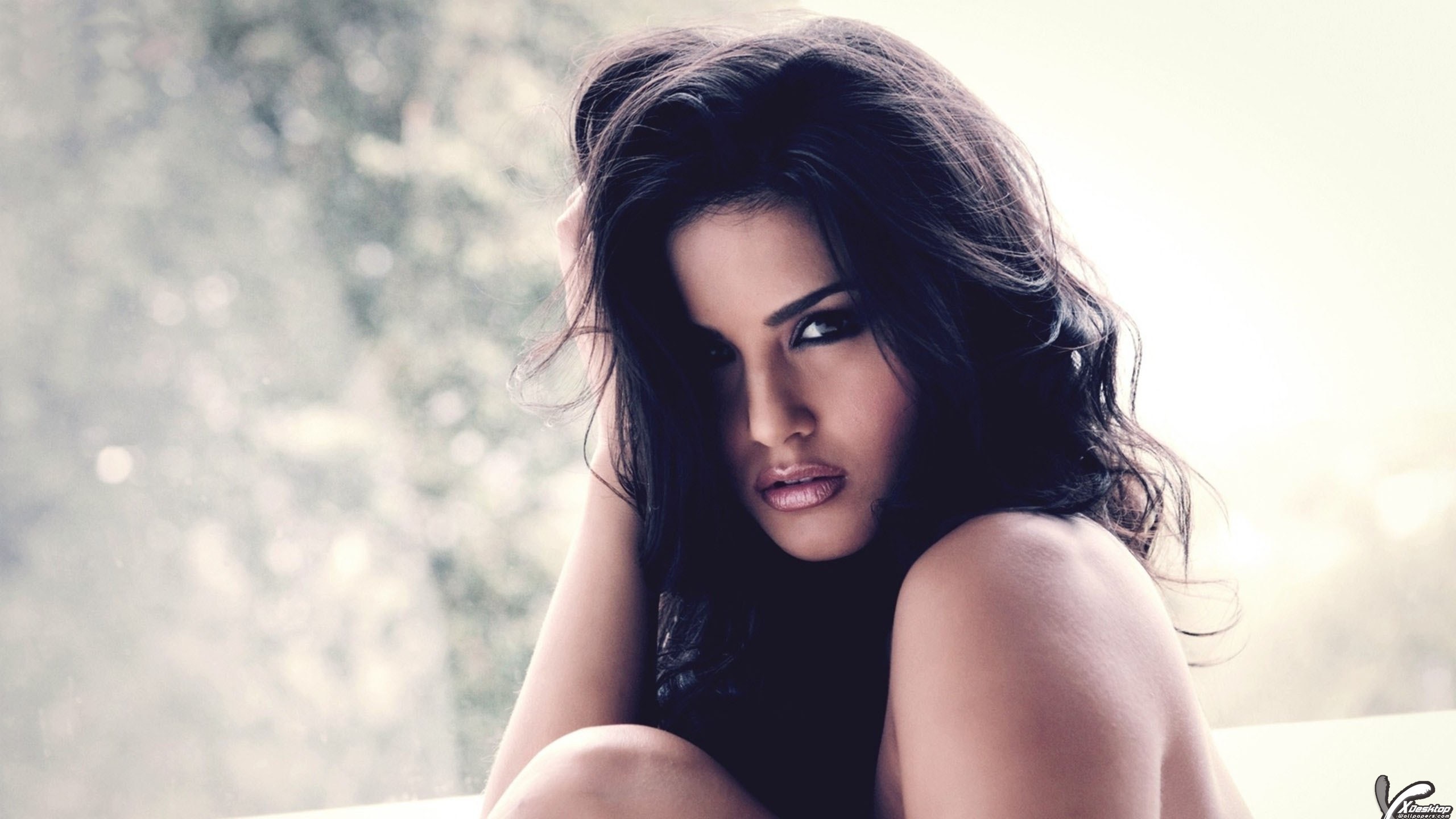 Sunny Leone Wallpapers Photos Images In Hd