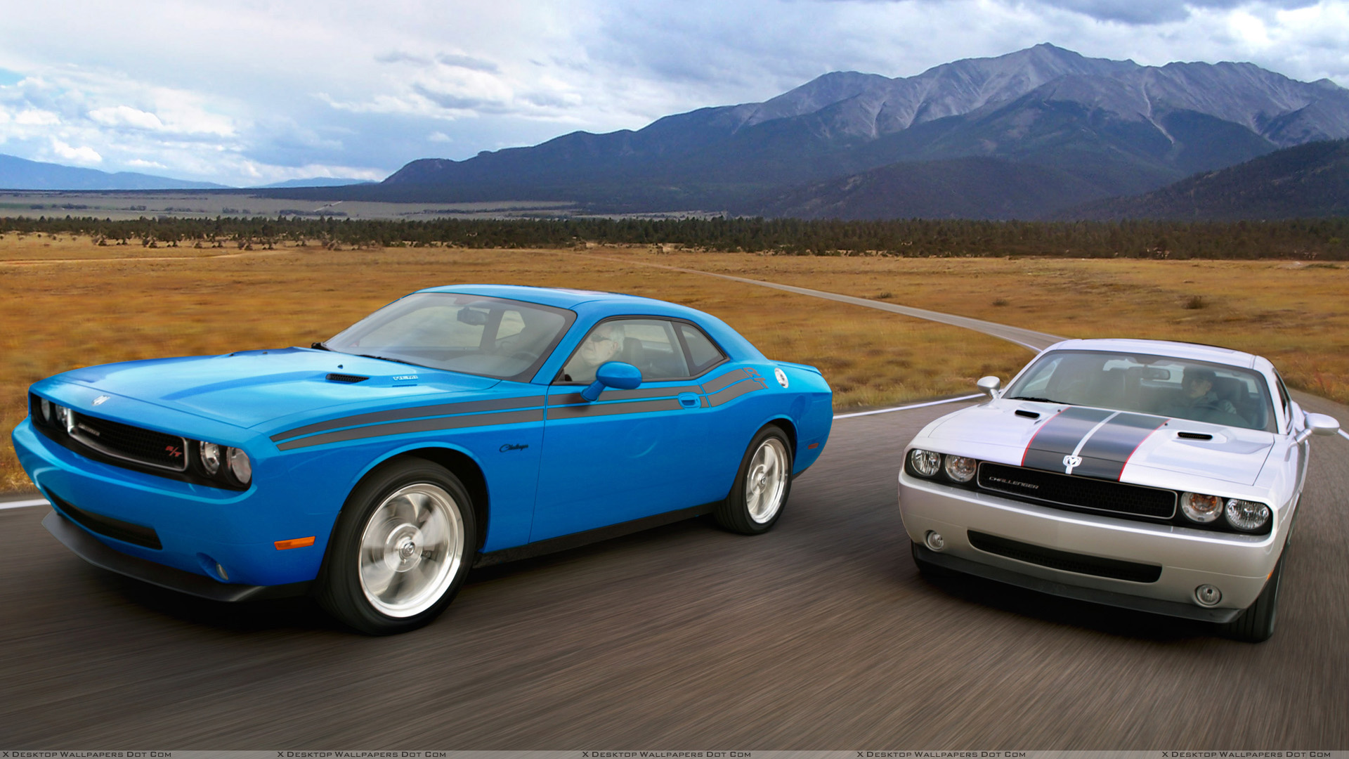 2009%20Dodge%20Challenger%20RT%20Classic%20In%20B5%20Blue%20Left%20With%20Dodge%20Challenger%20Se%20Rallye%20In%20Silver%20Right