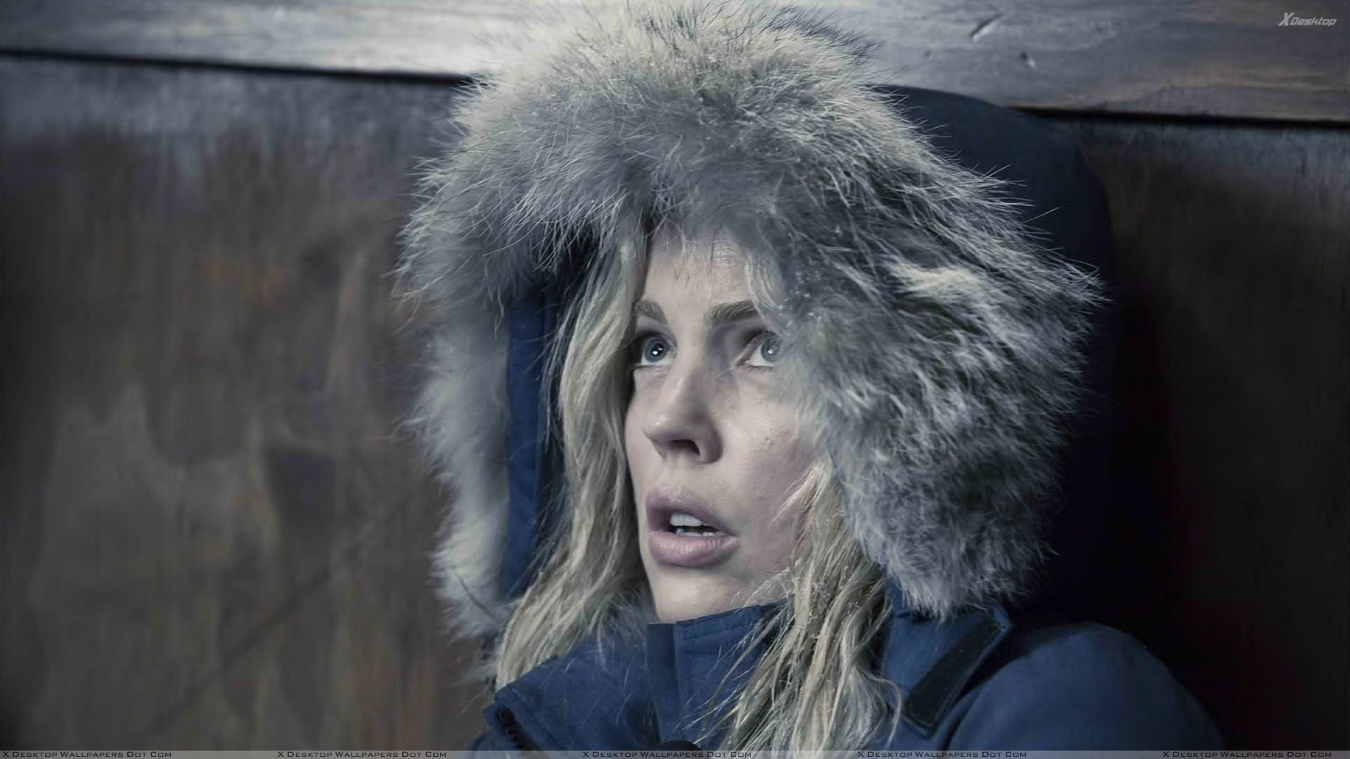 30 Days Of Night Wallpapers Photos Images In Hd