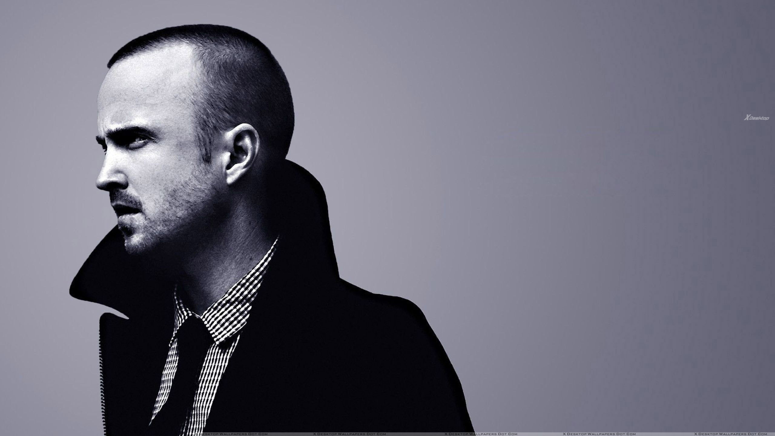 aaron paul wallpapers, photos & images in hd